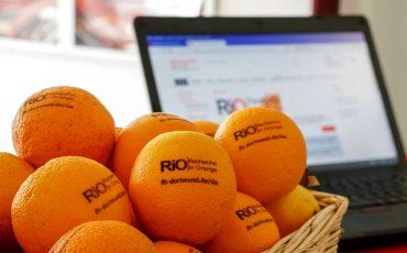 Recherche in Orange