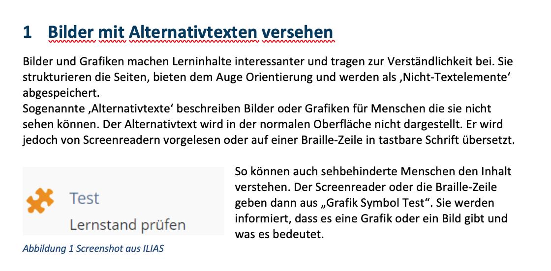 Screenshot einer Handreichung der ILIAS SIG Barrierefreiheit zum Thema ALT-Attribute bei Bildern